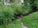Vodními porosty obrostlé břehy Kyjovky v Koryčanech jsou chvílemi vystřídány posekanou trávou.