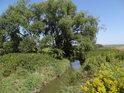 Kyjovka se blíží k poněkud se rozpadajícímu mostu nad Jarohněvickým rybníkem.