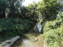 Kyjovka nad Jarohněvickým rybníkem s další stopou lidské nezodpovědnosti, zadní traktorovou pneumatikou.