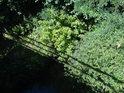 Bujnou vegetací porostlé břehy Kyjovky nad železničním mostem u Mutěnic.