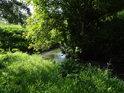 Sytě zelené barvy léta pod nízkým jezem na Kyjovce v Bohuslavicích.