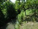 Kyjovka vtéká do Kyjova zahradami.