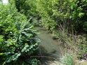 Alespoň trochu přirozený tok Kyjovky v dolní části Kyjova.