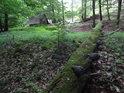 Pravý břeh Kyjovky jako lesní romance se zásobníkem sena.