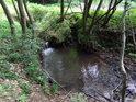 Pod malým jezem přijímá Kyjovky zleva menší přítok, kterým je lesní potůček, tekoucí kdesi od Hladné vody.