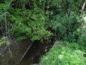 Kyjovka si to lesním porostem míří k přehradě Koryčany.